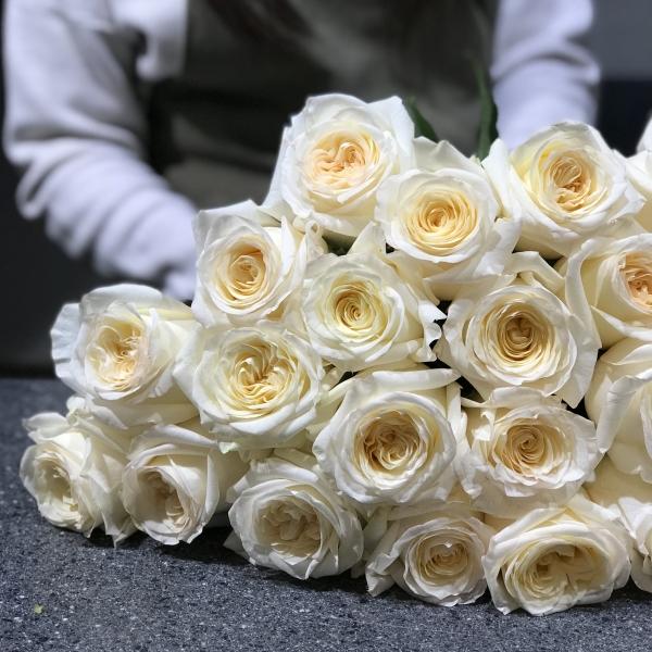 Розы Кендллайт