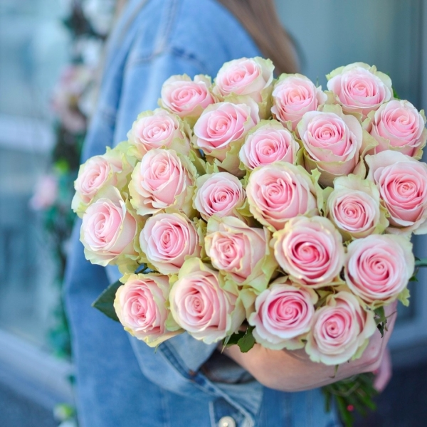 Розы Марципан