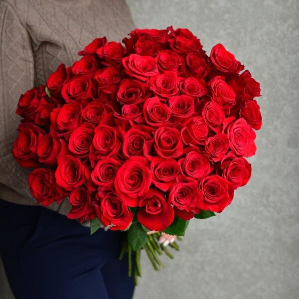 Букет 51 красная роза Фридом 60 см