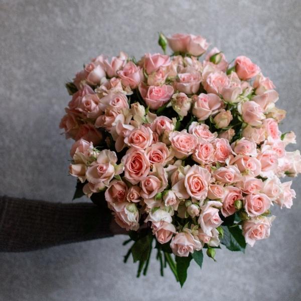 Розы Кустовые Свит Сара